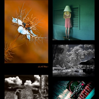 December 2011 Photography Exhibition, featuring: Ari Salmela, Alfredo Sanchez Ezquerra, Fernando Lyra, RaMell Ross, Zdravko Horvat