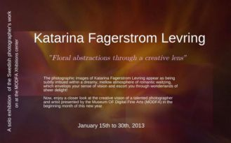 MoDFA Solo Photo Exhibition, featuring Katarina Fagerstrom Levring